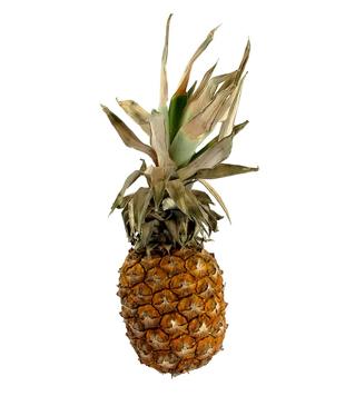 Ananas sweet 1ks
