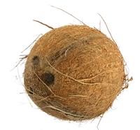 Kokosový ořech 1 ks